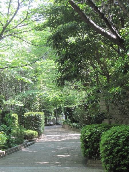 城山ガーデン.JPG