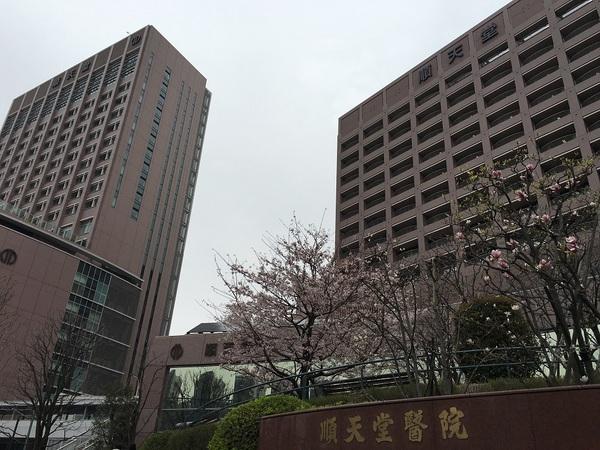 順天堂大学附属病院.jpg