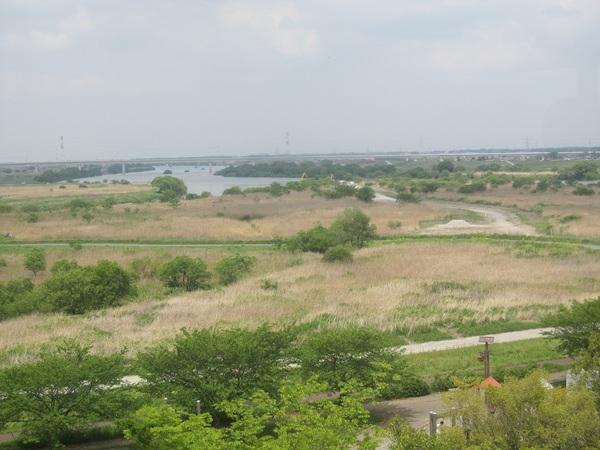 利根川と江戸川の分岐.jpg