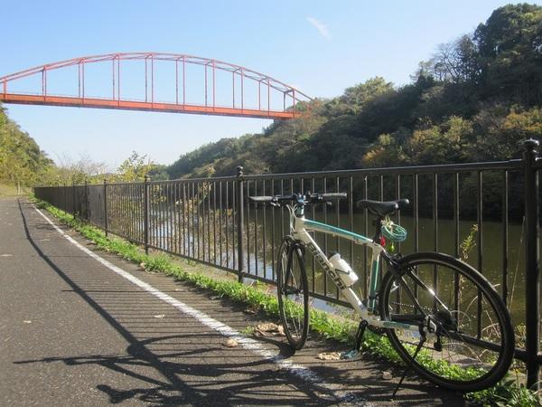 印旛捷水路とBianchi.jpg