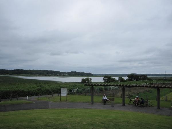 双子公園の丘.jpg