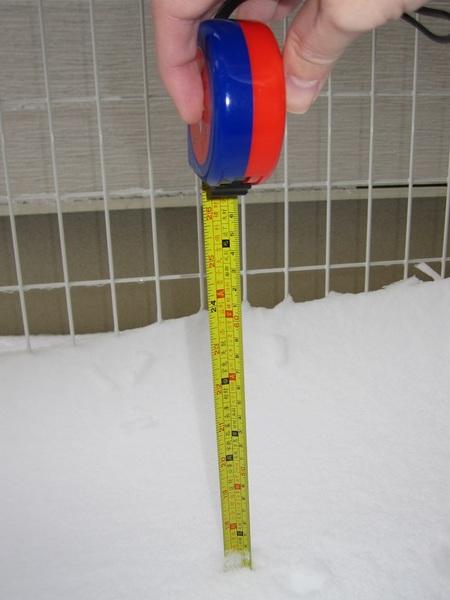 積雪40cm.jpg